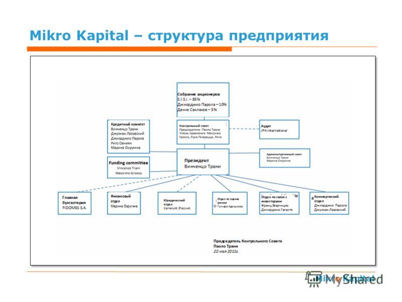 Mikro Kapital Mikro Kapital – структура предприятия Impieghi