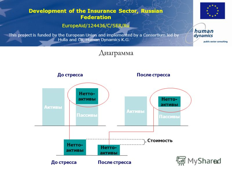 Development of the Insurance Sector, Russian Federation EuropeAid/124436/C/SER/Ru This project is funded by the European Union and implemented by a Consortium led by Hulla and Co, Human Dynamics K.G. 14 Диаграмма Активы Пассивы Нетто- активы До стрес