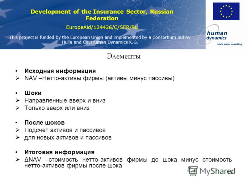 Development of the Insurance Sector, Russian Federation EuropeAid/124436/C/SER/Ru This project is funded by the European Union and implemented by a Consortium led by Hulla and Co, Human Dynamics K.G. 15 Элементы Исходная информация NAV –Нетто-активы