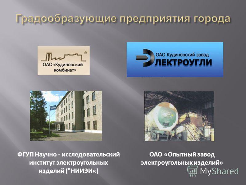 ФГУП Научно - исследовательский институт электроугольных изделий (НИИЭИ«) ОАО «Опытный завод электроугольных изделий»