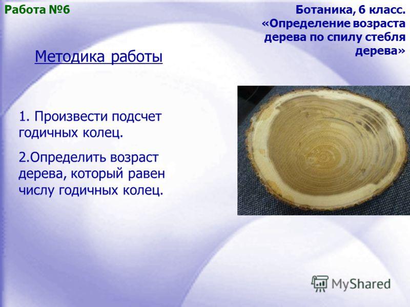 Работа 6Ботаника, 6 класс. «Определение возраста дерева по спилу стебля дерева» Методика работы 1. Произвести подсчет годичных колец. 2.Определить возраст дерева, который равен числу годичных колец.