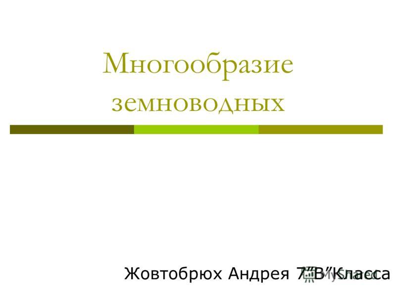 Многообразие земноводных Жовтобрюх Андрея 7ВКласса