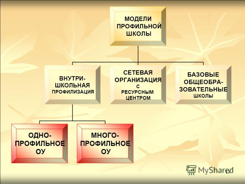 13 МОДЕЛИ ПРОФИЛЬНОЙ ШКОЛЫ ВНУТРИ- ШКОЛЬНАЯ ПРОФИЛИЗАЦИЯ ОДНО- ПРОФИЛЬНОЕ ОУ МНОГО- ПРОФИЛЬНОЕ ОУ СЕТЕВАЯ ОРГАНИЗАЦИЯ С РЕСУРСНЫМ ЦЕНТРОМ БАЗОВЫЕ ОБЩЕОБРА- ЗОВАТЕЛЬНЫЕ ШКОЛЫ