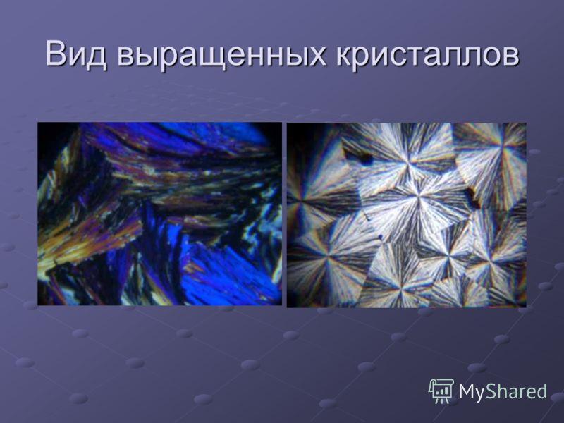 Вид выращенных кристаллов