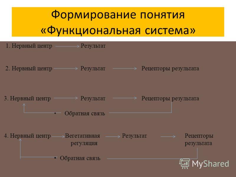 Формирование понятия «Функциональная система» 1. Нервный центр Результат 2. Нервный центр Результат Рецепторы результата 3. Нервный центр Результат Рецепторы результата Обратная связь 4. Нервный центр Вегетативная Результат Рецепторы регуляция резуль