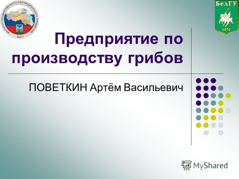 Предприятие по производству грибов ПОВЕТКИН Артём Васильевич
