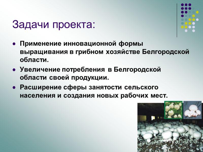 Применение инновационной формы выращивания в грибном хозяйстве Белгородской области. Увеличение потребления в Белгородской области своей продукции. Расширение сферы занятости сельского населения и создания новых рабочих мест. Задачи проекта: