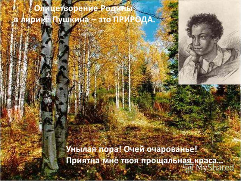 Олицетворение Родины в лирике Пушкина – это ПРИРОДА. Унылая пора! Очей очарованье! Приятна мне твоя прощальная краса…