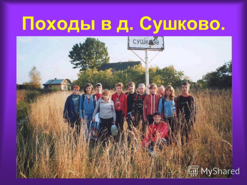 Походы в д. Сушково.