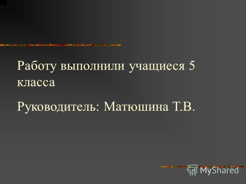 Работу выполнили учащиеся 5 класса Руководитель: Матюшина Т.В.