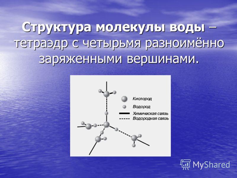 Структура молекулы воды – тетраэдр с четырьмя разноимённо заряженными вершинами.
