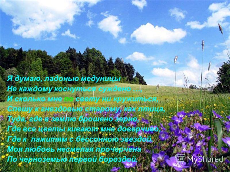 Я думаю, ладонью медуницы Не каждому коснуться суждено …, И сколько мне по свету ни кружиться, Спешу к гнездовью старому, как птица, Туда, где в землю брошено зерно, Где все цветы кивают мне доверчиво, Где к пажитям с бессонною звездой. Моя любовь не