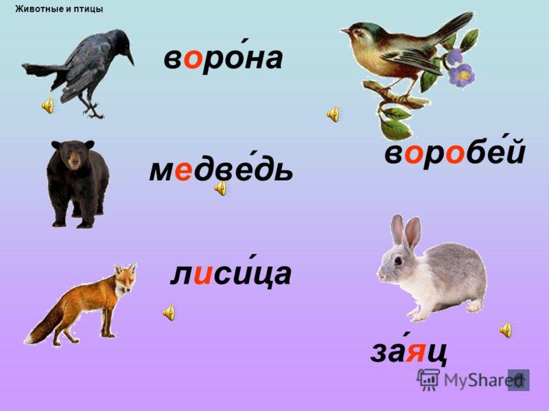 Животные и птицы Растенияастения Картинный звуковой диктант Ягодыгоды Инструменты