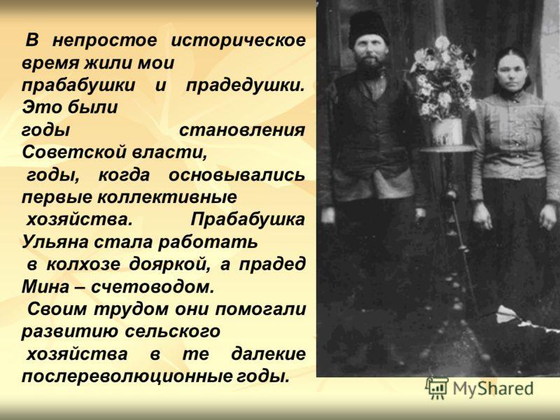 В непростое историческое время жили мои прабабушки и прадедушки. Это были годы становления Советской власти, годы, когда основывались первые коллективные хозяйства. Прабабушка Ульяна стала работать в колхозе дояркой, а прадед Мина – счетоводом. Своим