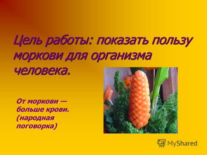 Цель работы: показать пользу моркови для организма человека. От моркови больше крови. (народная поговорка)