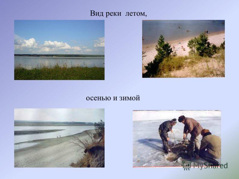 Вид реки летом, осенью и зимой
