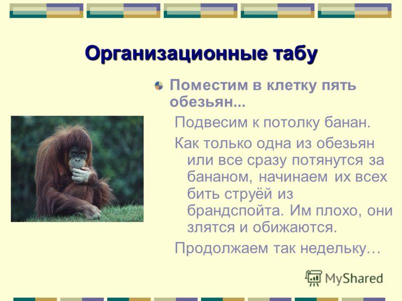 Организационные табу Поместим в клетку пять обезьян... Подвесим к потолку банан. Как только одна из обезьян или все сразу потянутся за бананом, начинаем их всех бить струёй из брандспойта. Им плохо, они злятся и обижаются. Продолжаем так недельку…