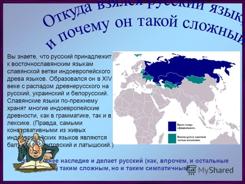 Вы знаете, что русский принадлежит к восточнославянским языкам славянской ветви индоевропейского древа языков. Образовался он в XIV веке с распадом древнерусского на русский, украинский и белорусский. Славянские языки по-прежнему хранят многие индоев