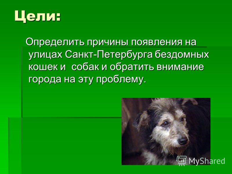 Цели: Определить причины появления на улицах Санкт-Петербурга бездомных кошек и собак и обратить внимание города на эту проблему. Определить причины появления на улицах Санкт-Петербурга бездомных кошек и собак и обратить внимание города на эту пробле