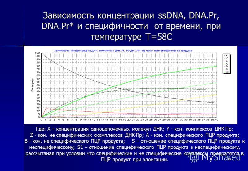 19 Зависимость концентрации ssDNA, DNA.Pr, DNA.Pr* и специфичности от времени, при температуре T=58С Где: X – концентрация одноцепочечных молекул ДНК; Y - кон. комплексов ДНК. Пр; Z - кон. не специфических скомплексов ДНК. Пр; A - кон. специфического