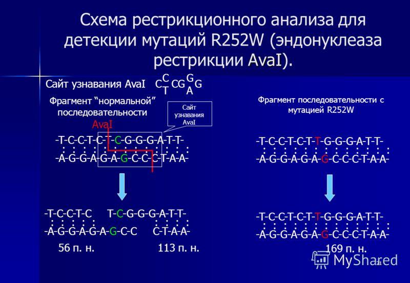 21 AvaI Схема рестрикционного анализа для детекции мутаций R252W (эндонуклеаза рестрикции AvaI). -T-C-C-T-C-T-C-G-G-G-A-T-T- -A-G-G-A-G-A-G-C-C-C-T-A-A- : : : : : : : : : : : : : AvaI 169 п. н. 113 п. н.56 п. н. Сайт узнавания AvaI C CG G Фрагмент но