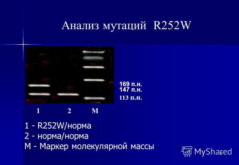 22 Анализ мутаций R252W 1 - R252W/норма 2 - норма/норма М - Маркер молекулярной массы 1 2 М 113 п.н. 147 п.н. 169 п.н.