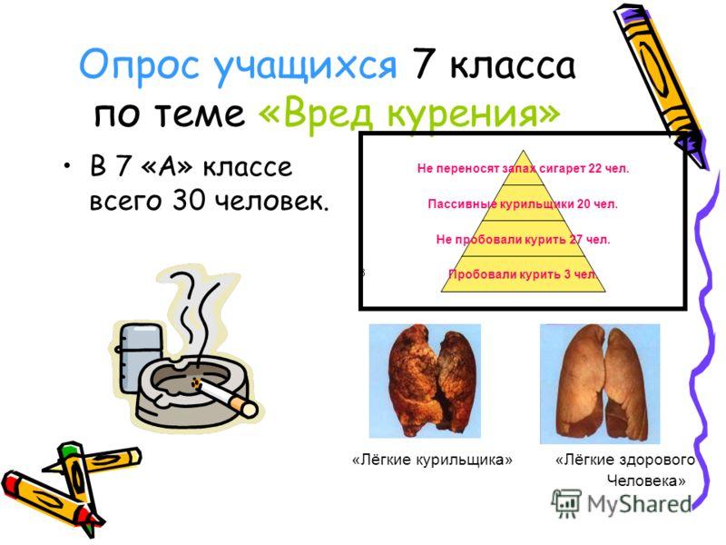 Опрос учащихся 7 класса по теме «Вред курения» В 7 «А» классе всего 30 человек. Не переносят запах сигарет 22 чел. Пассивные курильщики 20 чел. Не пробовали курить 27 чел. Пробовали курить 3 чел. «Лёгкие курильщика» «Лёгкие здорового Человека»