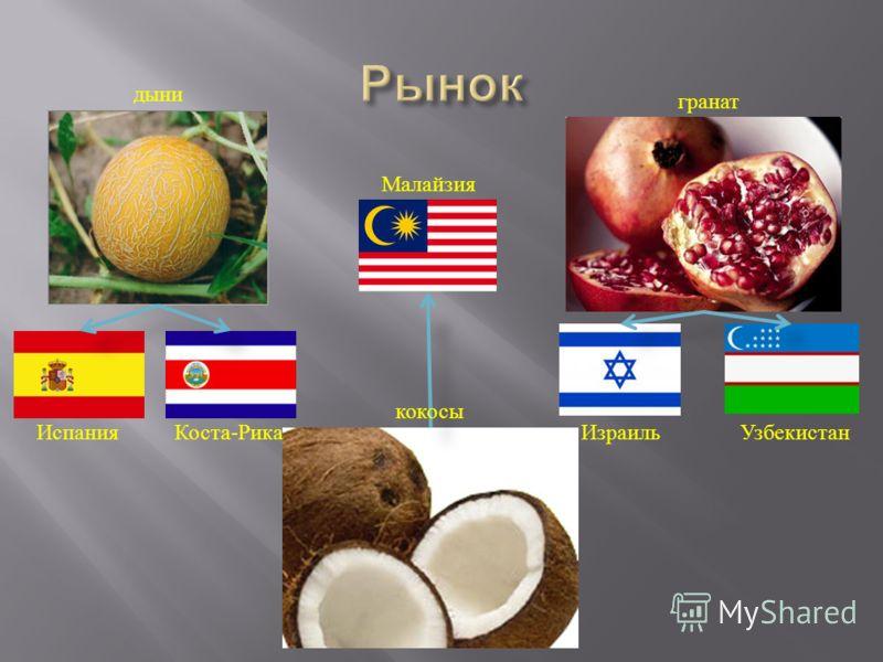 дыни Испания Коста - Рика Малайзия гранат ИзраильУзбекистан кокосы