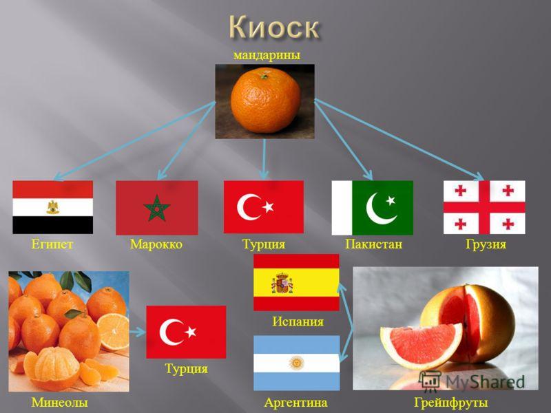мандарины ЕгипетМароккоТурцияПакистанГрузия Минеолы Турция Испания АргентинаГрейпфруты