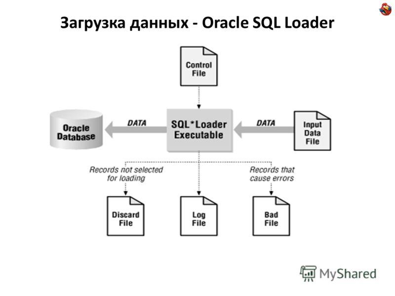 Загрузка данных - Oracle SQL Loader