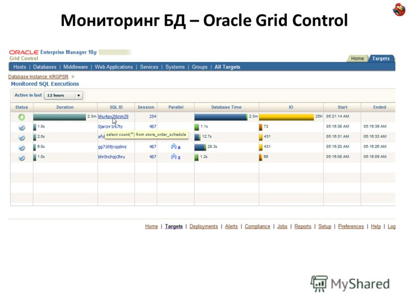 Мониторинг БД – Oracle Grid Control