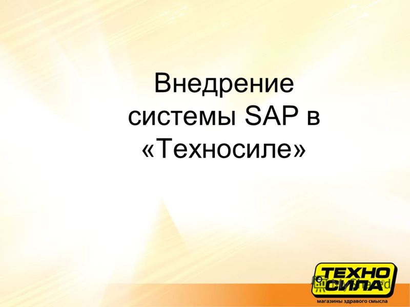 Внедрение системы SAP в «Техносиле»