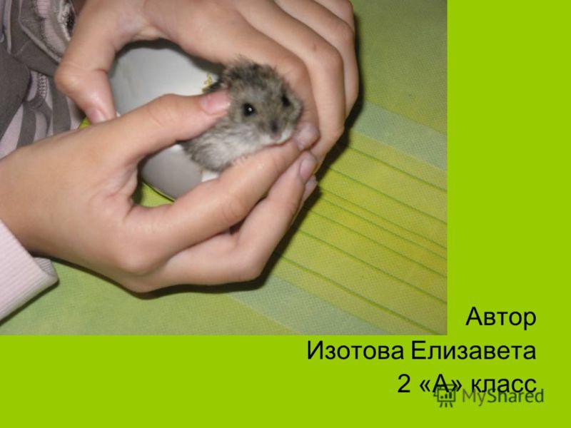 Автор Изотова Елизавета 2 «А» класс