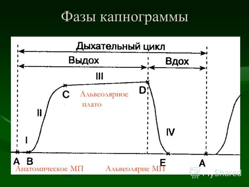 Фазы капнограммы Альвеолярное плато Анатомическое МПАльвеолярне МП