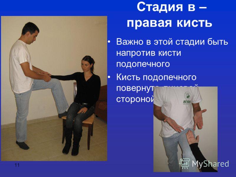 11 Стадия в – правая кисть Важно в этой стадии быть напротив кисти подопечного Кисть подопечного повернута лицевой стороной вверх
