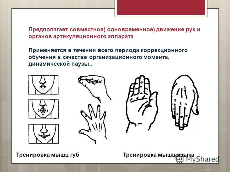 Предполагает совместное( одновременное) движение рук и органов артикуляционного аппарата Применяется в течении всего периода коррекционного обучения в качестве организационного момента, динамической паузы.. Тренировка мышц губТренировка мышц языка