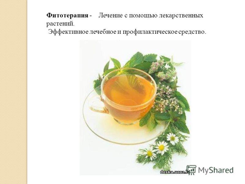 Фитотерапия - Лечение с помощью лекарственных растений. Эффективное лечебное и профилактическое средство.