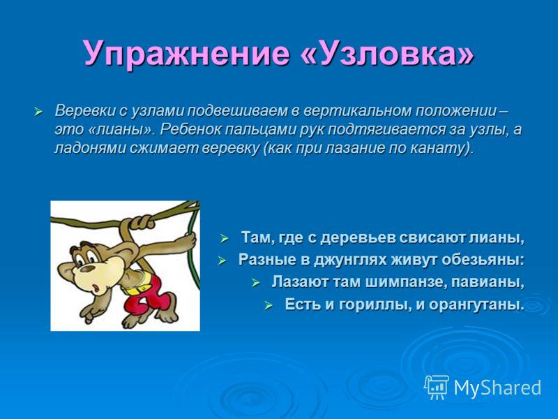 Упражнение «Узловка» Веревки с узлами подвешиваем в вертикальном положении – это «лианы». Ребенок пальцами рук подтягивается за узлы, а ладонями сжимает веревку (как при лазание по канату). Веревки с узлами подвешиваем в вертикальном положении – это