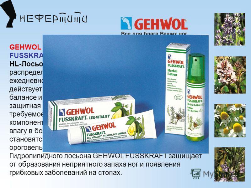 GEHWOL FUSSKRAFT® НL-Лосьон с кepaмидами (сухая кожа) НL-Лосьон С керамидами GEHWOL FUSSKRAFТ легко распределяется по поверхности кожи, предназначен для ежедневного ухода при сухости кожи стоп и ног. Он действует быстро, восполняя недостатки в липидн