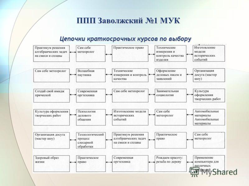 Цепочки краткосрочных курсов по выбору ППП Заволжский 1 МУК