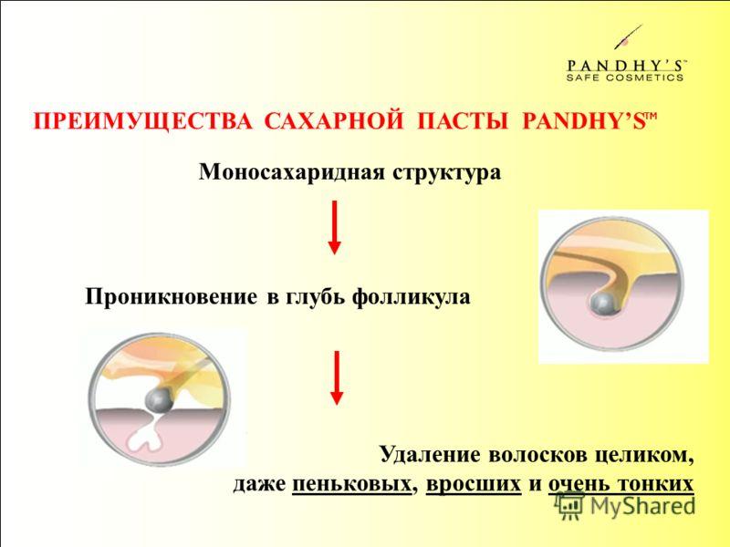 Проникновение в глубь фолликула Моносахаридная структура Удаление волосков целиком, даже пеньковых, вросших и очень тонких ПРЕИМУЩЕСТВА САХАРНОЙ ПАСТЫ PANDHYS TM