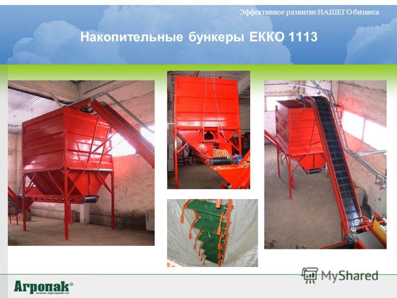 Накопительные бункеры ЕККО 1113