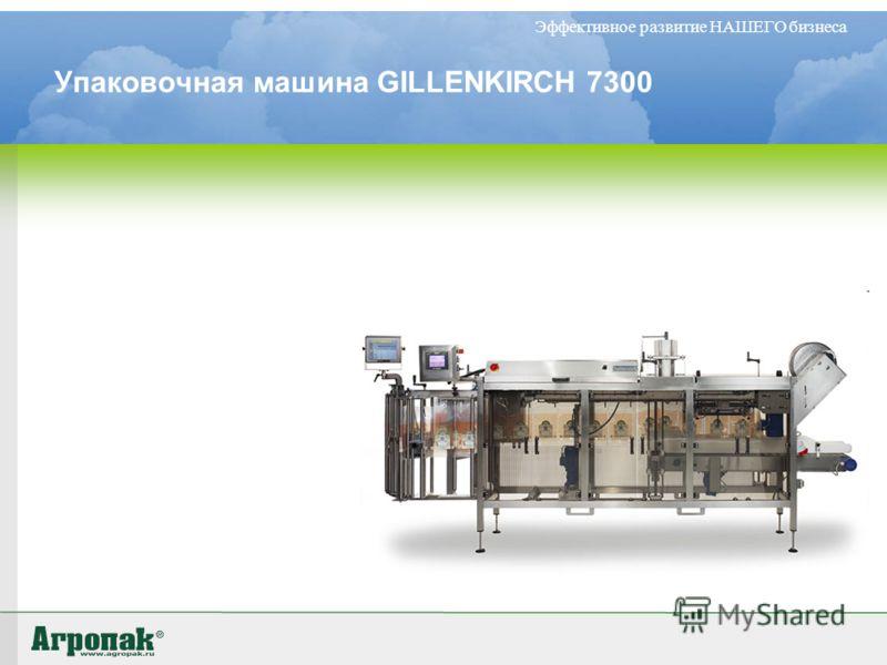 Эффективное развитие НАШЕГО бизнеса Упаковочная машина GILLENKIRCH 7300