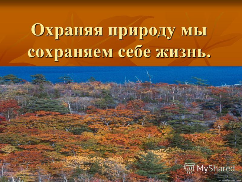 Охраняя природу мы сохраняем себе жизнь.