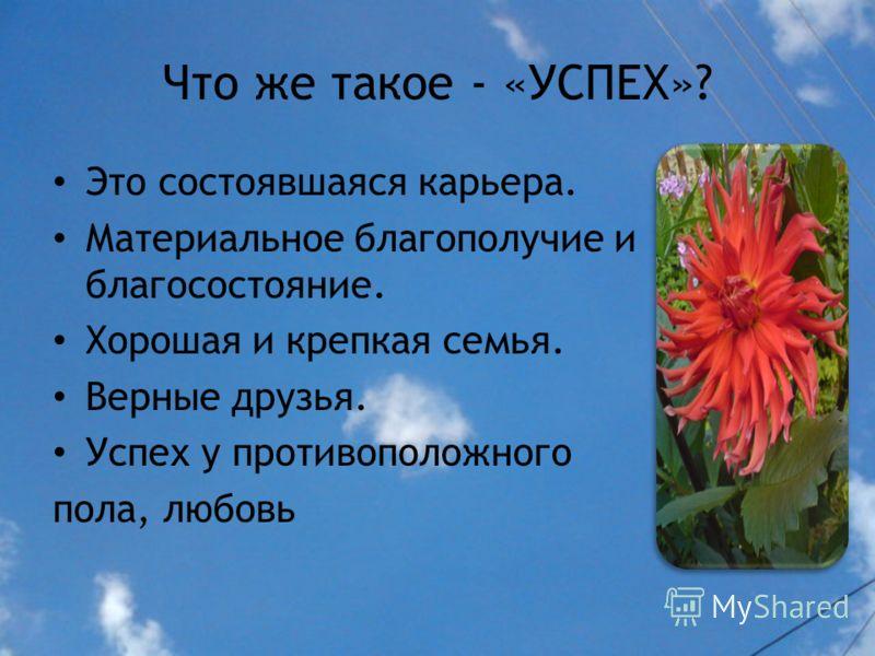 Как вы думаете, что движет человеком в жизни? Или в чем ее смысл? Желание создать семью. Желание получить образование. Желание быть полезным в обществе и своем окружении. Желание разбогатеть. Желание самоутвердиться в жизни.