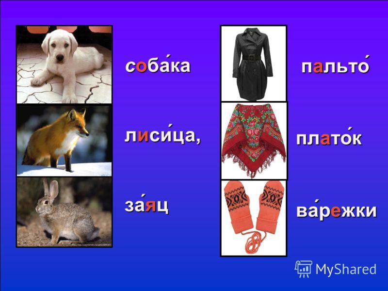 пальто платок варежки собака лисица, заяц
