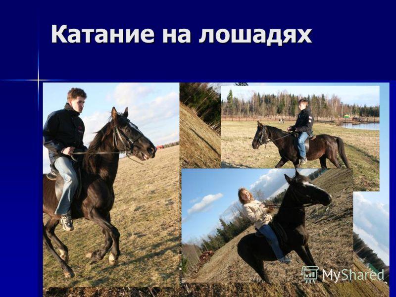 29.08.201216 Катание на лошадях