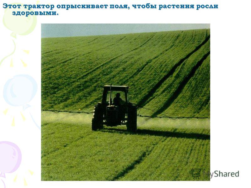 Этот трактор везёт много таких свёртков сена. Тракторы могут перевозить и лёгкие, и тяжёлые грузы.