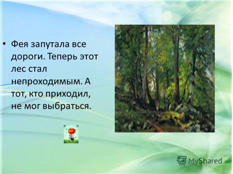 Фея запутала все дороги. Теперь этот лес стал непроходимым. А тот, кто приходил, не мог выбраться.