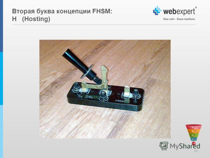 Вторая буква концепции FHSM: H (Hosting) 13